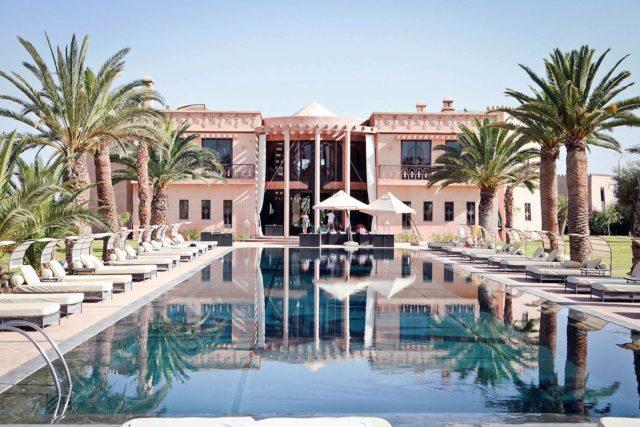 immense-piscine-bordee-palmiers